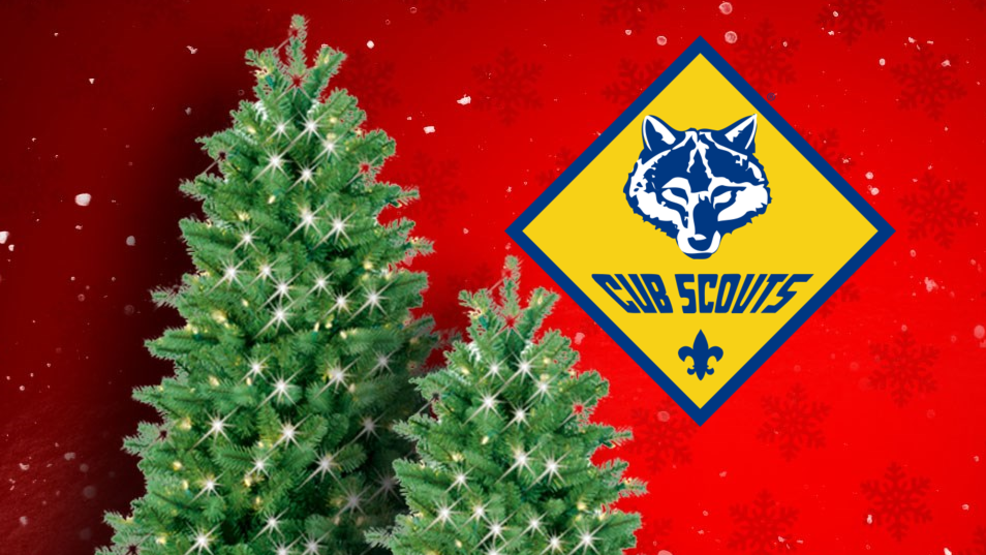 Arcata Cub Scouts Offer To Pick Up Haul Away Old Christmas Trees Krcr